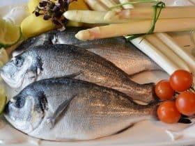 najzdravija riba