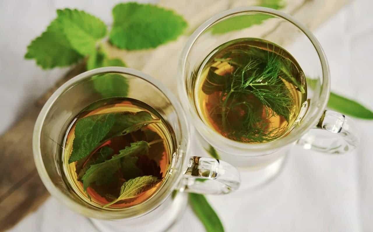 čaj od koprive za prostatu